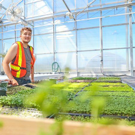 Landscape Technician – Horticulture Technician – Greenhouse Technician, the Encouraging Programs in Canada!